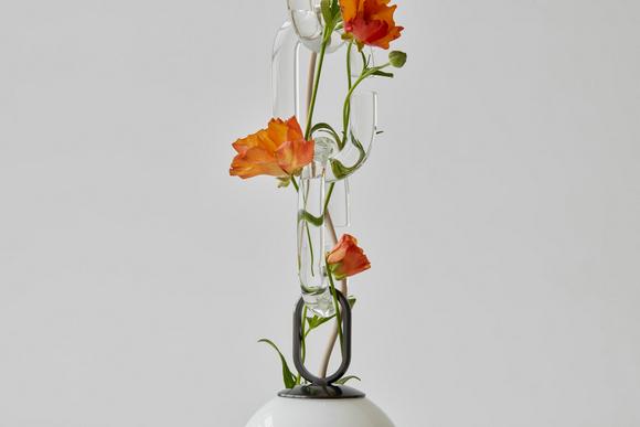 Cerine系列花