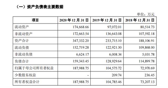 资产负债表主要数据_1