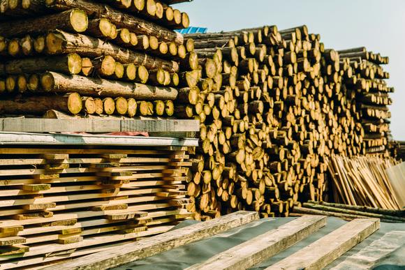 美国木材出口